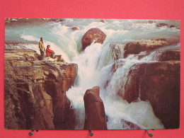 Canada - Alberta - Canadian Rockies - Sunwapta Falls - Icefields Highway - Excellent état - Scans Recto-verso - Jasper