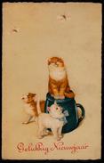 BONNE ANNEE - GELUKKIG NIEUWJAAR - CHAT CHASSE PAPILLON - CAT HUNTS BUTTERFLY - Cats - Chats - Nieuwjaar