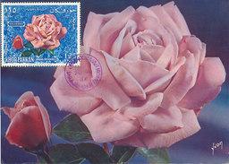 D28651 CARTE MAXIMUM CARD 1966 KHOR FAKKAN SHARJAH - PINK ROSE CP ORIGINAL - Rosen