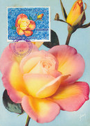 D28652 CARTE MAXIMUM CARD 1966 KHOR FAKKAN SHARJAH - PINK/YELLOW ROSE CP ORIGINAL - Rose