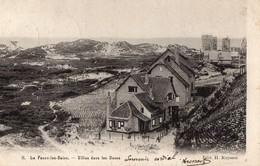 LA  PANNE Les BAINS   -  Villas Dans Les Dunes - Non Classificati