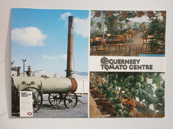 Postcard Multiview  The Guernsey Tomato Centre My Ref B295 - Cultivation