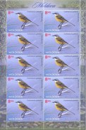 "Moldova 2014 ""Fauna Of Moldova. The Wagtail  "" Sheet Quality:100%"