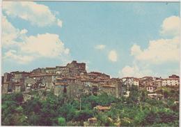 CASTELNUOVO DI PORTO ( ROMA) -F/G   COLORE (170714) - Italia