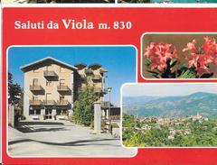 Cartoline Saluti Da...viola - Souvenir De...