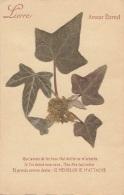 Matériaux Différents - Fleurs Séchées - Lierre Mousse - Amour Eternel - 1940 - Cartes Postales