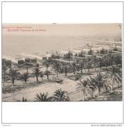 ALCNTP2374CPA.LFTD4394THR.Tarjeta Postal DE ALICANTE.Palmeras,BALNEARIOS.Panoramas De Los Baños De Alicante - Hoteles & Restaurantes