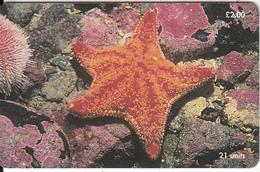 ISLE OF MAN(chip) - Red Cushion Starfish, Tirage 20000, Used