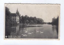 BRUGES Le Lac D'Amour - Brugge