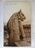 SCULPTURES - PARIS - Notre Dame - Chimères - Sculptures