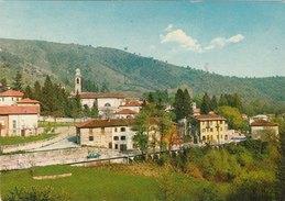 RASA-VARESE  -F/G   Colore (101010) - Varese