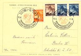 BuM (IMG0808) - Böhmen Und Mähren (1941) Turnau 1 - Turnov 1: Stamp Exhibition (logo - Cutting Precious Stone!) - Minerals