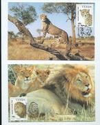 Venda (Afrique Du Sud) 4 Cartes Maximums ,Zèbre,Rhinocéros,Lion,Guépard - Venda