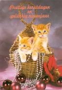 Fantasie - Katten - Poezen - Chats - Cats - Other Collections