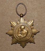 Médaille Famille Française La Patrie Reconnaissante Bronze - Unclassified