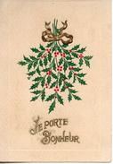 Carte Illustrée Gaufrée. Houx - Giftige Pflanzen