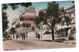 FRENDA (ORAN) - LA MAISON DU COLON - Algérie