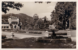 TRINIDAD - PORT OF SPAIN : BOTANIC GARDEN / JARDIN BOTANIQUE - CARTE VRAIE PHOTO / REAL PHOTO POSTCARD ~ 1930 (v-492) - Trinidad