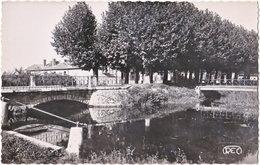 18. Pf. AUBIGNY-SUR-NERE. Vue Sur La Nère. 2809 - Aubigny Sur Nere