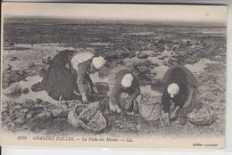 76 - GRANDES DALLES - La Pêche Des Moules - France