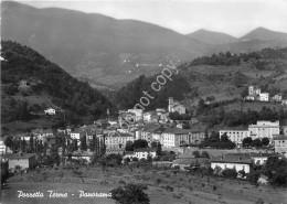 Cartolina - Porretta Terme Panorama 1958 - Bologna