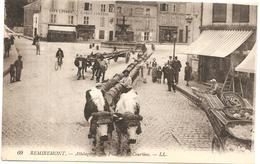 REMIREMONT   (vosges )  ATTELAGE De BOEUF VOSGIEN PLACE DE LA COURTINE - Remiremont