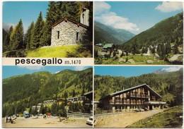 Pescegallo, M.1470, Used Postcard [19361] - Sondrio