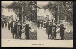 Paris Jardin Des Plantes Les Cygnes (carte Stereo) - Unclassified