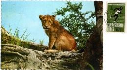 KENYA  KENIA  The Lion Cub  Kenia Uganda Tanzania Nice Stamp  Commonwealth Games - Leoni