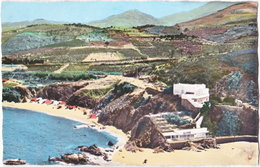 66. Pf. ARGELES-SUR-MER. Côte Rocheuse Du Racou. 585 - Argeles Sur Mer