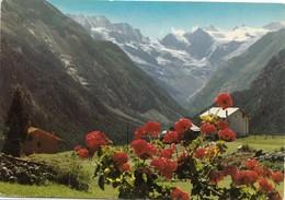 COGNE, Il Gran Paradiso M. 4061 E La Valnontey, Used Postcard [19374] - Italy