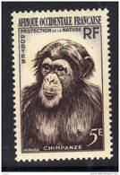 A. O. F. N° 51  XX Protection De La Nature : Chimpanzé Sans Charnière, TB