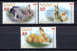 Indonesia 2011 / Mammals Rabbits MNH Säugetiere Conejos / Cu2127  31