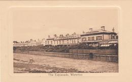 Vintage - England UK - Waterloo Esplanade - Sussex - Embossed - Unused - Valentine's Series - 2 Scans - England