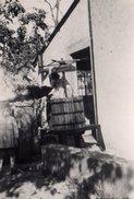 Photo Originale Pressoir à La Main à L'ancienne - Instatallation De La Machine & Assistants - Cidre Ou Vin Au Choix - Objects