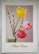 FROHE OSTERN - Happy Easter Buona Pasqua Bonnes Pâques Switzerland 1956 Flowers - Pasqua