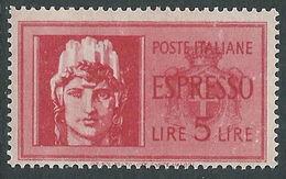 FRANCOBOLLI 1945 LUOGOTENENZA ESPRESSO 5 LIRE MNH **ITALIA NEW - 1944-46 Lieutenance & Humbert II