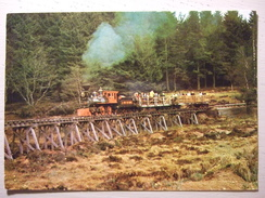 CHEMIN DE FER DE LA LOGE DES GARDES (42) ENTRE ROANNE ET VICHY PAR LA MONTAGNE BOURBONNAISE / JOLIE CARTE PHOTO - Trains
