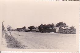 Foto Novii Gai - Nagaische Steppe - Ukraine - September 1941 - 9*6cm (27052) - Orte