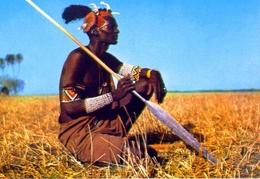 Shullock Warrior - 89-76 - Sudan - Formato Grande Non Viaggiata - E - Sudan