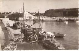 ILE D'OLERON - LE CHATEAU - Le Port Très Animé - Vieux Camions - Ile D'Oléron