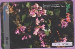 Télécarte Bulgarie °° 100 Units - Haberlea Rhodopensis  –  RV - Bulgarie