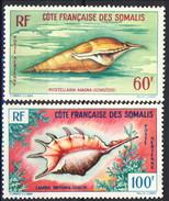 Costa Dei Somali Posta Aerea 1962 Serie N. 31-32 MNH Cat. € 20 - Costa Francesa De Somalia (1894-1967)