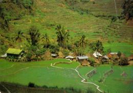 THE RICE TERRACES IN  BONTOC  -MOUNTAIN PROVINCE   2  SCAN     (VIAGGIATA) - Filippine