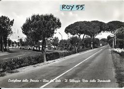 Toscana-grosseto-castiglione Della Pescaia Riva Del Sole Via Provinciale Veduta Cartello Benzinaio Esso Villaggio - Italia