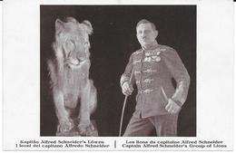 CIRCO KAPITAN ALFRED SCHNEIDER'S LOWEN - Circus