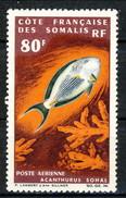 Costa Dei Somali Posta Aerea 1966 N. 54  F. 80 MH Cat. € 20 - Unused Stamps