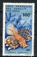 Costa Dei Somali Posta Aerea 1966 N. 55  F. 100 MNH Cat. € 25 - Unused Stamps