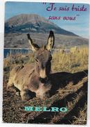 """France - CPM  """"Je Suis Triste Sans Vous"""". - Donkeys"""