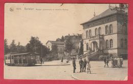 Boitsfort - Maison Communale Et Nouvelle Avenue - Tram 30 - 1923 ( Voir Verso ) - Watermael-Boitsfort - Watermaal-Bosvoorde